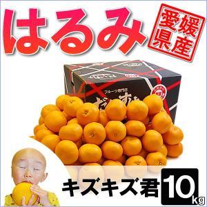 愛媛県産 はるみ キズキズ君 10kg|daisuke