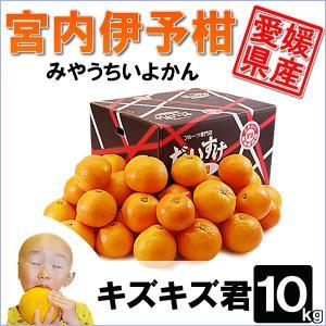 愛媛県産 みやうちいよかん キズキズ君10kg daisuke