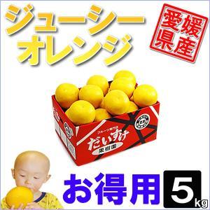ジューシーオレンジ お得用5kg