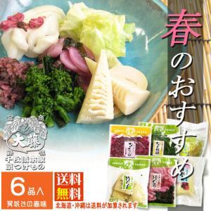 漬物 ギフト しぃずん春風 京都 漬物老舗 季節のおすすめ お漬けもの 詰め合せセット 母の日