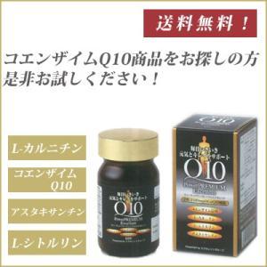 Q10 パワープレミアムエクセレント|daito