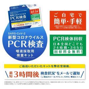 正規品 PCR 検査キット 唾液 薬局 自宅 安い 精度 pcr検査機器 簡易検査 おすすめ コロナ検査 キット 抗原 ウイルス 検査 簡単 手軽 採取 唾液検査 費用 RT-PCRの画像