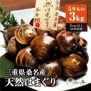 桑名 はまぐり 活はまぐり 地はまぐり 大粒 通販 お取り寄せ / はまぐり庵 天然 はまぐり 5年もの(3kg)5cm以上60粒前後|daiwa-kigyo