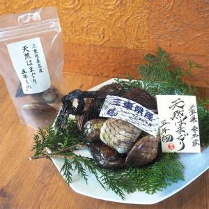 天然はまぐり 5年もの 3個 / 桑名 はまぐり 活はまぐり 地はまぐり 大粒 通販 お取り寄せ はまぐり庵 天然 はまぐり 蛤 5cm以上 daiwa-kigyo