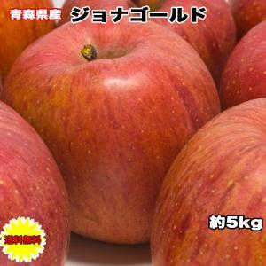 【わけあり】【青森県】【ジョナゴールド】【りんご】【5キロ】