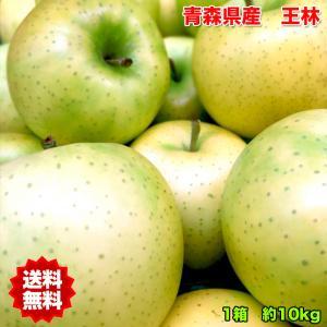 青森県産王林りんご 約10kg 訳あり 糖度保証