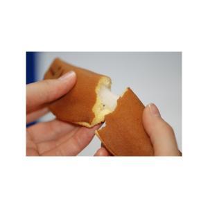 和菓子 詰め合わせ やす川上鮎 16個入 鮎菓子 お取り寄せ ギフト お供え 老舗|daiya|05