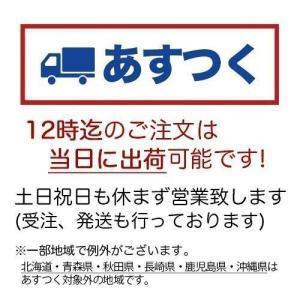 和菓子 詰め合わせ 珠の栗 30個入 栗 チョコ お菓子 お取り寄せ ギフト お供え お供え物 老舗 高級|daiya|02