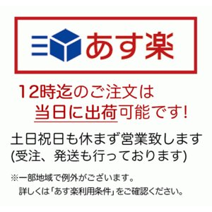 和菓子 最中 詰め合わせ 福もなか 10個入 お菓子 お取り寄せ ギフト 高級 老舗  法事 お供え お供え物 お土産|daiya|02