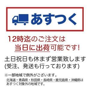 和菓子 詰め合わせ やす川上鮎 6個入 鮎菓子 お取り寄せ ギフト お供え 老舗|daiya|02