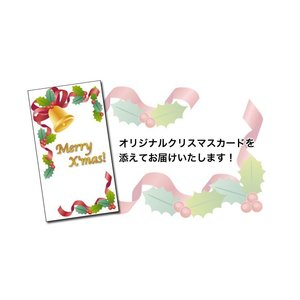 クリスマス 和菓子 小倉ロールと和菓子9点詰合せ 詰め合わせ ギフト スイーツ 高級 老舗 送料無料 daiya 07