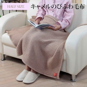 のびふわ毛布 暖かい ふわふわ 毛布 ハーフサイズ(約)縦100×横140