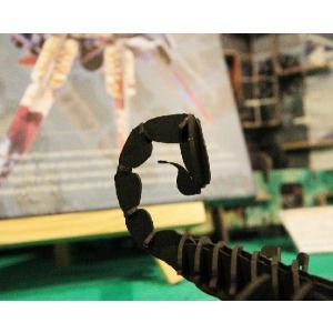 立体 ペーパークラフト ウラノ 3Dペーパーパズル サソリ (ブラック) 【台座付き】(送料¥300 小型便配送可)|dambool-crafts|04