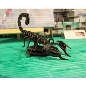 立体 ペーパークラフト ウラノ 3Dペーパーパズル サソリ (ブラック) 【台座付き】(送料¥300 小型便配送可)|dambool-crafts|05