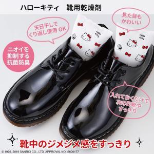 ハローキティ シューズケアシリーズ 靴用乾燥剤 is-fit イズフィット R080-1124 danceshoes