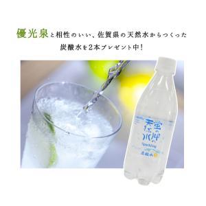 完全無添加の酵素ドリンク 優光泉  ハーフボトル 550ml×2本セット 炭酸水プレゼント|danjiki-dojo|04