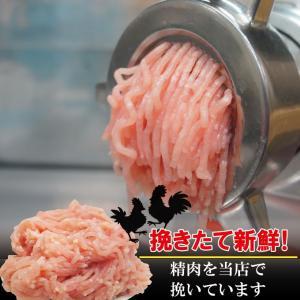 国産鶏ひき肉 600g 冷凍 国産鶏肉100%使用 男しゃく 100g当59.8円+税 鶏肉 鶏挽肉 ミンチ むね肉 ムネ肉|dansyaku|02