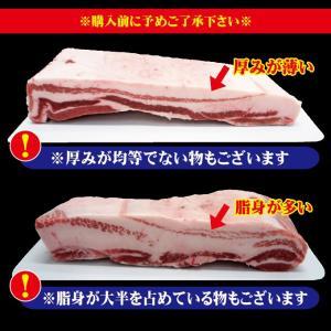 国産 豚バラ肉 ブロック冷凍 1kg 男しゃく100g当119.9円+税 ばら チャーシュー用 角煮 業務用|dansyaku|05
