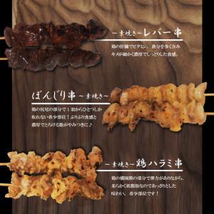選べる 串焼12本セット冷凍 12種からお好きな組み合わせでお届け タレ付き 1本当り65円+税やきとり 焼き鳥 牛串 豚串 バーベキュー 焼肉 dansyaku 04