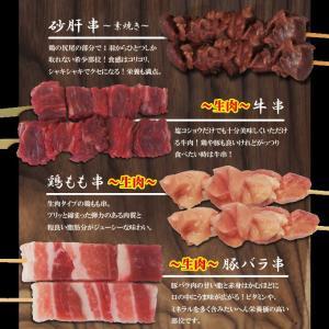 選べる 串焼12本セット冷凍 12種からお好きな組み合わせでお届け タレ付き 1本当り65円+税やきとり 焼き鳥 牛串 豚串 バーベキュー 焼肉 dansyaku 05