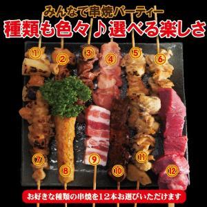 選べる 串焼12本セット冷凍 12種からお好きな組み合わせでお届け タレ付き 1本当り65円+税やきとり 焼き鳥 牛串 豚串 バーベキュー 焼肉 dansyaku 06