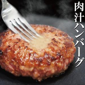 送料無料 肉汁ハンバーグ 130g×2個 国産牛豚使用 冷凍 2セット購入でプラス3個おまけ ステーキ 焼肉 黒毛 国産牛肉 国産豚肉