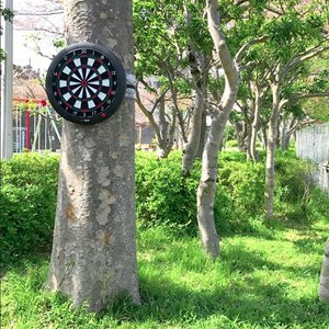 GRAN DARTS BELT グランダーツベルト|dartsshoptito|06