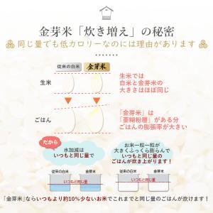 金芽米 ひとめぼれ 5kg 宮城県産 平成30年産|datekura-takumi|12