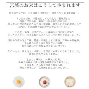 金芽米 ひとめぼれ 5kg 宮城県産 平成30年産|datekura-takumi|16
