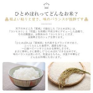 金芽米 ひとめぼれ 5kg 宮城県産 平成30年産|datekura-takumi|03