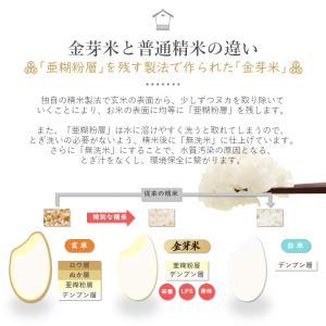 金芽米 ひとめぼれ 5kg 宮城県産 平成30年産|datekura-takumi|07