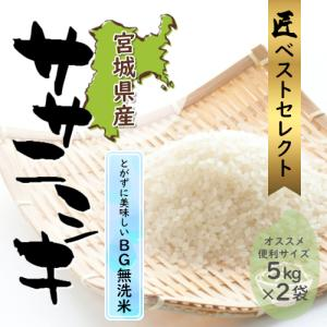 【新米】無洗米 ササニシキ 10kg(5kg×2袋) 宮城県産 令和元年産