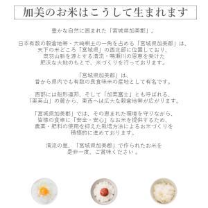 新米 金芽米 ひとめぼれ 2kg 宮城県加美産 特別栽培米 令和2年産 受注生産|datekura-takumi|16