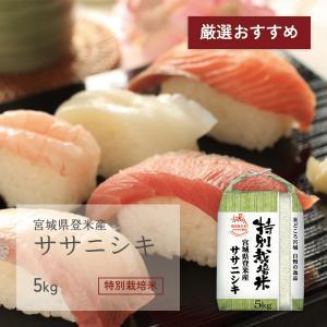 ササニシキ 5kg 宮城県登米産 特別栽培米 令和元年産 受注生産