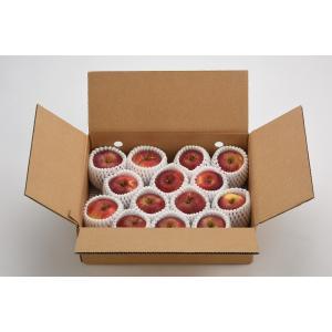 予約品9月中下旬発送  送料・税込み価格  食べきり使い切り小玉紅玉りんご 2.5kg|datesuimituen|02