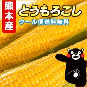 熊本産  入江さんの こだわり スイートコーン  20本  ...