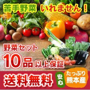 熊本・九州産  野菜セット 大盛 10品以上13品保証  送料無料  クール便   熊本 九州 野菜 盛り合わせ 食材 グルメ ご当地 ギフ ト母の日 父の日 お中元 お歳暮