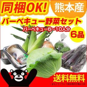 熊本産  バーベキューセット 夏季限定 BBQ 野菜 詰め合わせ  クール便 送料無料  野菜 盛り合わせ セット 熊本 九州