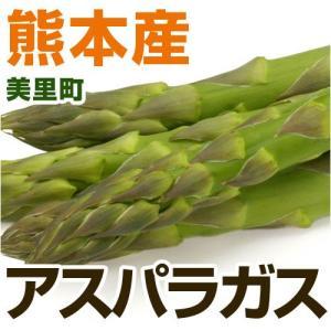 熊本県産 アスパラガス 1束 【野菜セットと同梱で送料無料】