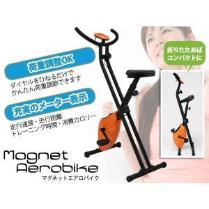 エアロバイク ダイエット エクササイズ 有酸素運動 マグネットタイプ 美脚 運動 家庭用 バイクB-717H【pick1】|daybyday