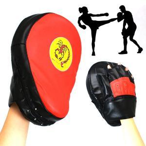 パンチミット ミット ボクササイズ ボクシング 格闘技 ミットJWB 赤 daybyday