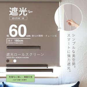 ロールスクリーン ロールカーテン ロールブラインド 幅60cm 遮光率99.99% スクリーンRK60|daybyday