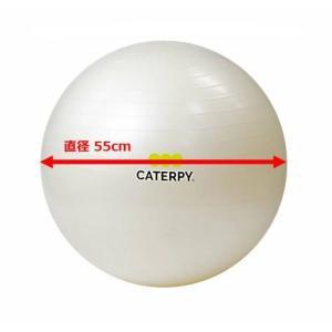 CF-007 ツインズCATERPY [FITNESS] フィットネスボール55cm カラー/パールホワイト dazzle-sp