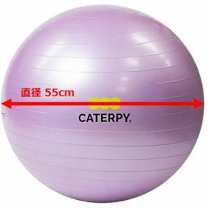 CF-008 ツインズCATERPY [FITNESS] フィットネスボール55cm カラー/バイオレット dazzle-sp