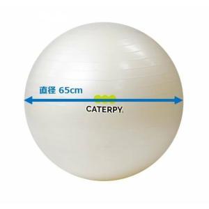 CF-009 ツインズCATERPY [FITNESS] フィットネスボール65cm カラー/パールホワイト dazzle-sp
