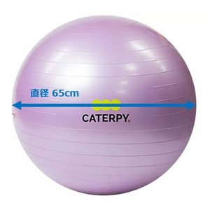 CF-010 ツインズCATERPY [FITNESS] フィットネスボール65cm カラー/バイオレット dazzle-sp