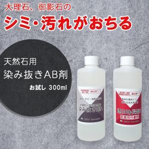 掃除 お試し用 大理石・御影石用 染み抜き洗剤 300mL×2本 A液B液のセット 湿布用 dc-lab