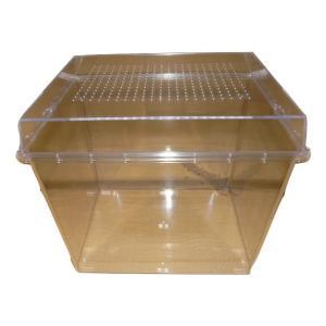 デジケース 昆虫飼育ケース 虫かご 水槽 HR-3H 10個 dcats