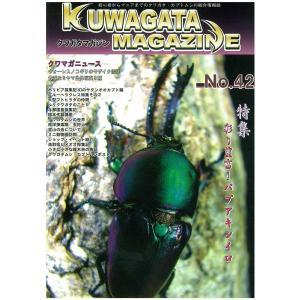 新品・くわがたマガジン NO42 メール便送料無料|dcats