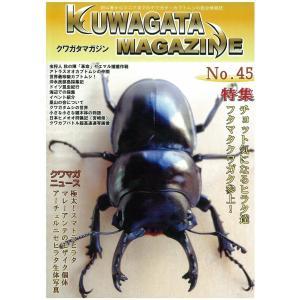 新品・くわがたマガジン NO45 メール便送料無料|dcats